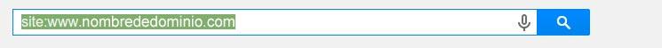 Como saber si mi web esta indexada en Google